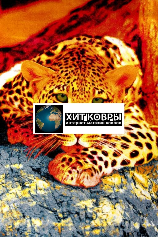 Украинский ковер Kolibri 2450